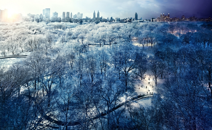 NYC's Day and Night - Central Park