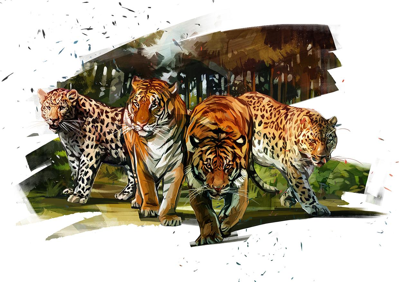 Big Cats In Subway Peter Yee Designer Web Developer Author